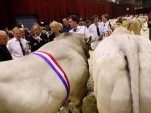 NVM staatssecretaris Bleker Parco dagkampioen stieren